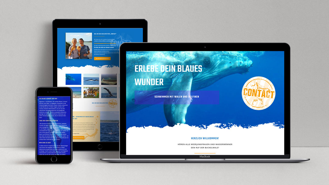 Webagentur MW - Projekte - Schwimmen mit Walen